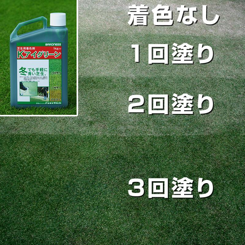 ゴルフ場でも使用の芝生専用着色剤。茶色になった芝生を簡単に美しい緑色に変身させます。自然な色相で着色の違和感がなく、日本芝、西洋芝を問わず、年間を通じてご使用いただけます。