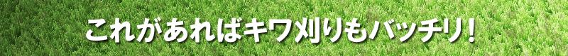 これがあれば芝生のキワ刈りもバッチリ!芝・芝生用バロネスバリカン式芝刈り機